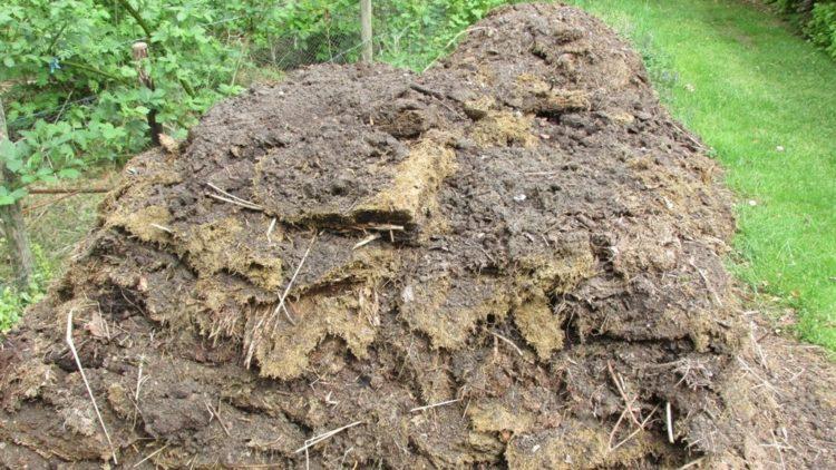 Tips om een composthoop te maken