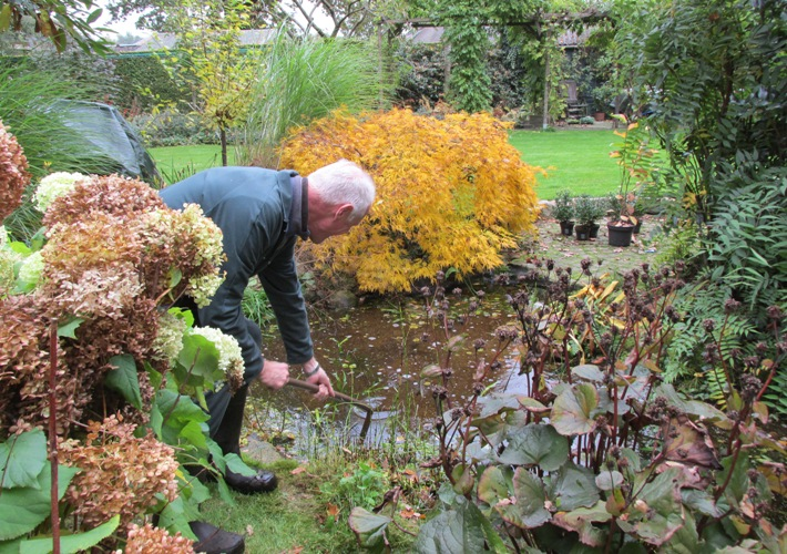Grote schoonmaak in de vijver groene passies for Filter vijver schoonmaken