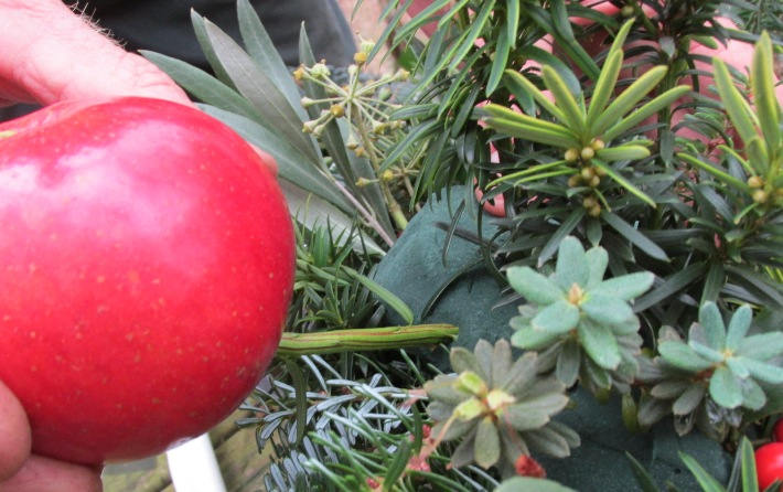 appel kerststuk