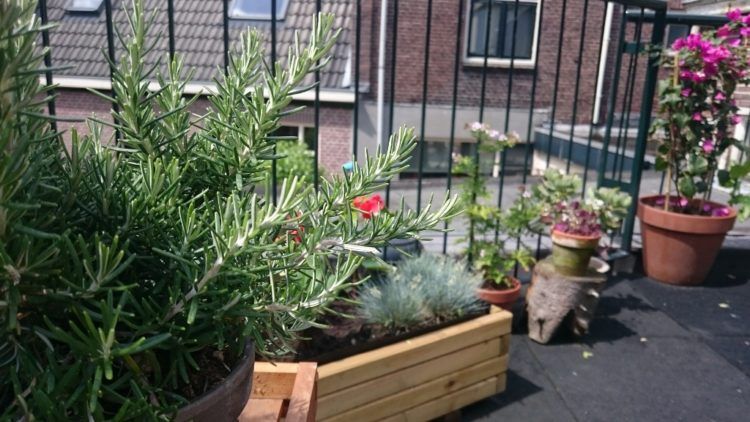 10 Mooie Balkons : Tips voor een dakterras of balkon