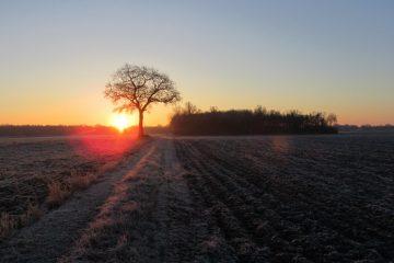 zonsopkomst winter
