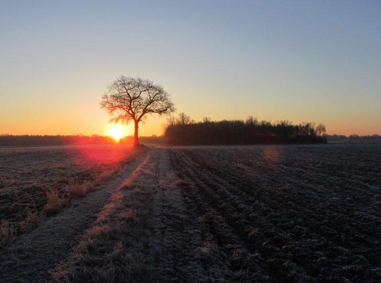 Zonsopkomst: koudste moment van de dag
