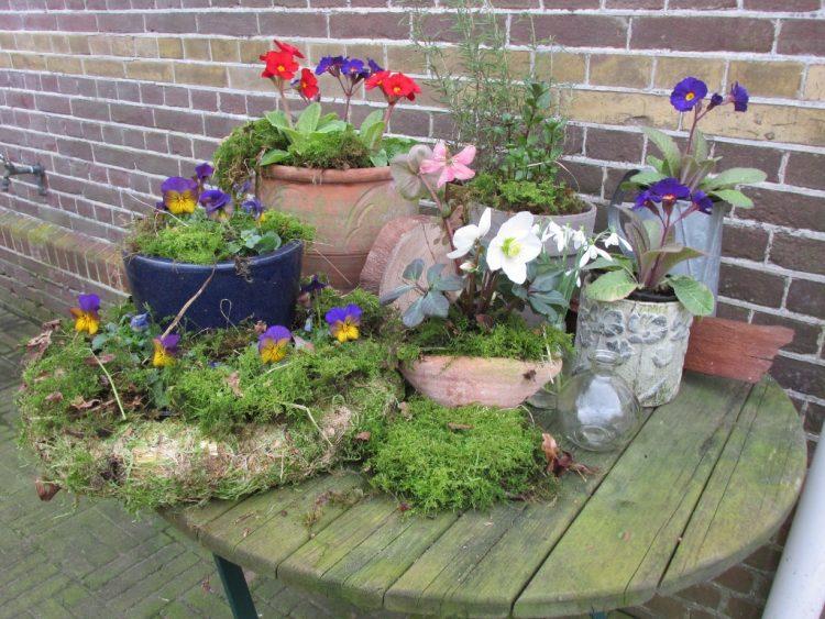 Tip: maak van je tuintafel een voorjaarstafel