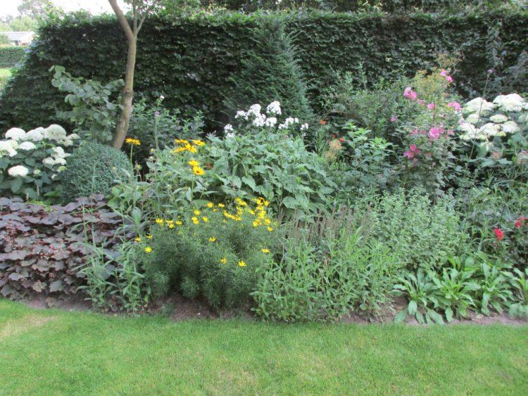 Nieuwe vaste planten en heesters uitplanten in je border