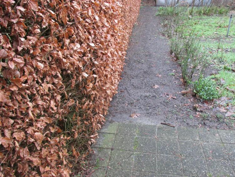 pad langs heg