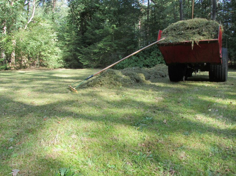 verschralingsbeheer bosweide maaisel weghalen