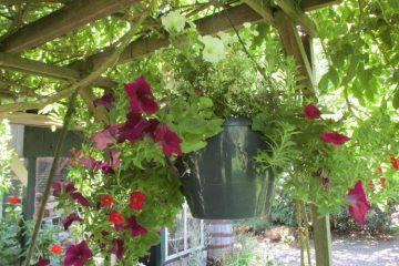 bloempot waterreservoir