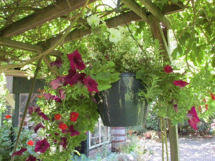 Bloempotten met waterreservoir