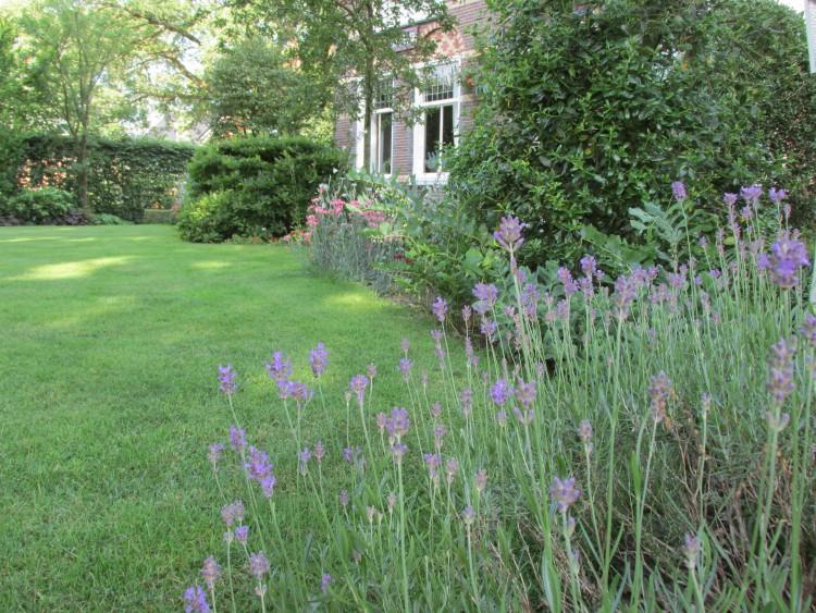 Verhuizen: wat doe je met de bestaande tuin?