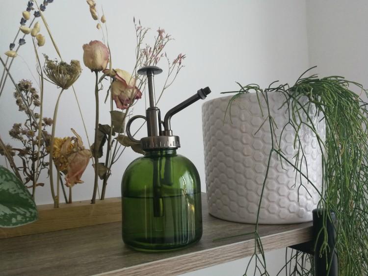 plantenspuit luchtvochtigheid